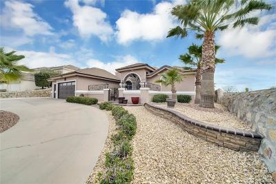 El Paso TX Single Family Home For Sale: $349,900