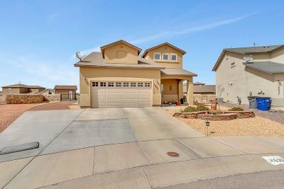 El Paso TX Single Family Home For Sale: $220,000