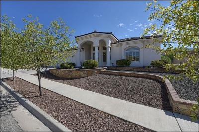 El Paso TX Single Family Home For Sale: $310,000