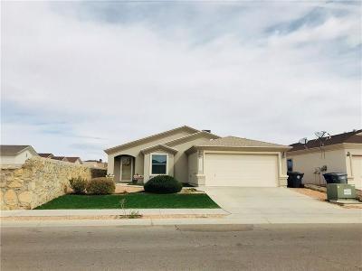 El Paso Single Family Home For Sale: 13965 Sandy Rock