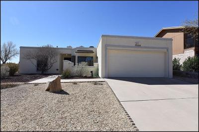 El Paso Single Family Home For Sale: 7024 Villa Hermosa Drive