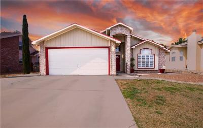 El Paso Single Family Home For Sale: 3129 Abbey Woods Place