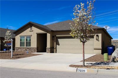 El Paso Single Family Home For Sale: 7605 Red Cedar Drive