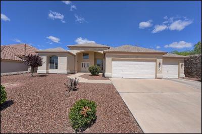 Single Family Home For Sale: 313 La Florida Drive