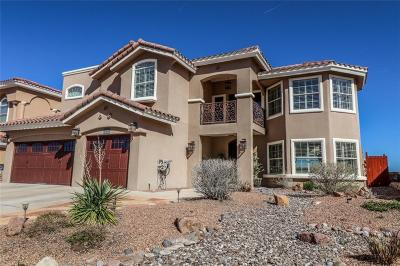 El Paso TX Single Family Home For Sale: $425,000
