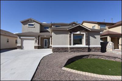 Single Family Home For Sale: 14721 Hunters Grove Avenue