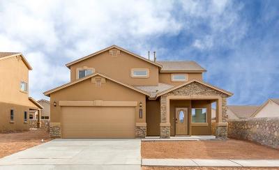Single Family Home For Sale: 14937 Quintan Gates Court