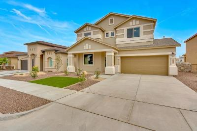Single Family Home For Sale: 3116 Red Orchard