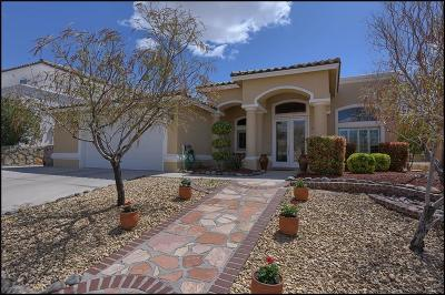 El Paso Single Family Home For Sale: 6336 Franklin View Drive