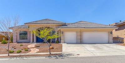 El Paso Single Family Home For Sale: 1463 Cheyenne Ridge Drive