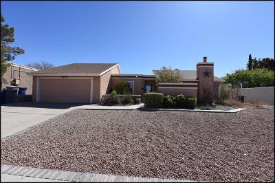 El Paso Single Family Home For Sale: 624 Espina Dulce
