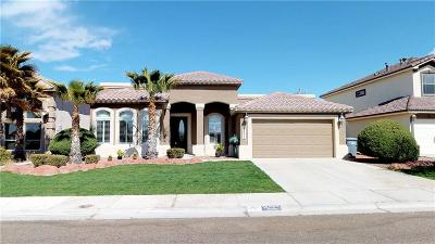Single Family Home For Sale: 12433 Nina Pearl Dr.