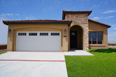 Horizon City Single Family Home For Sale: 12031 Equestrian Avenue