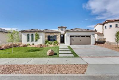 Single Family Home For Sale: 981 Abe Goldberg Avenue