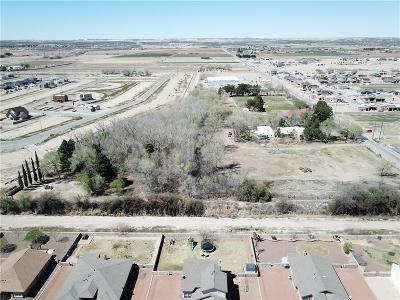 El Paso Single Family Home For Sale: 922 Borderland Road