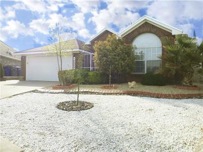 Single Family Home For Sale: 12254 Amstater Cir
