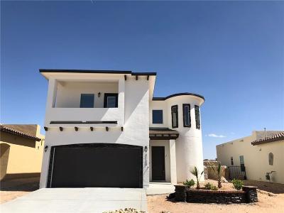 El Paso Single Family Home For Sale: 6109 Pocket Pl