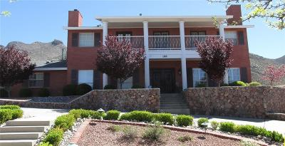 El Paso Single Family Home For Sale: 1100 Thunderbird Drive