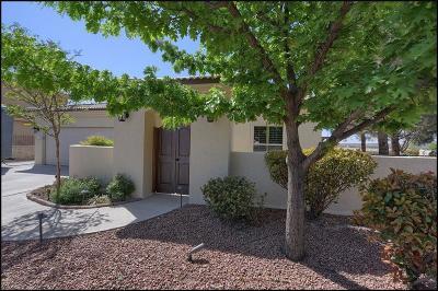 El Paso Single Family Home For Sale: 1178 Marbella Drive