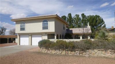 El Paso Single Family Home For Sale: 16033 Darley Drive