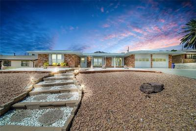 El Paso Single Family Home For Sale: 8907`` Galena Drive