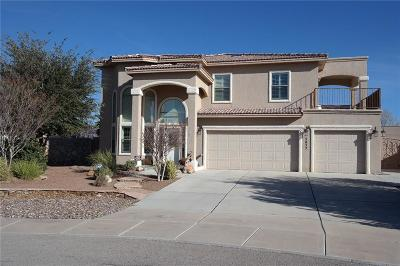 El Paso Single Family Home For Sale: 5852 Angel Street
