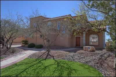 El Paso Single Family Home For Sale: 6520 Calle Bonita Lane