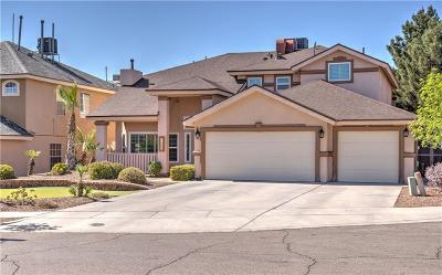 Single Family Home For Sale: 12508 Sun Spirit Drive