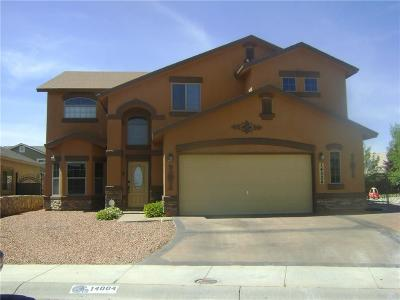 Single Family Home For Sale: 14004 Tower Point Way