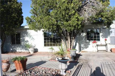 El Paso Single Family Home For Sale: 1404 Sioux Drive