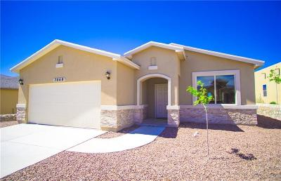 El Paso Single Family Home For Sale: 7869 Enchanted Range Drive