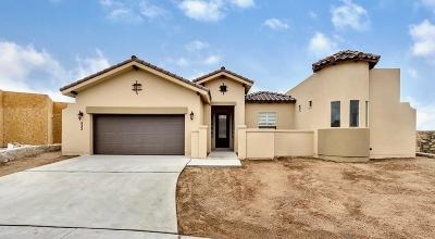 El Paso Single Family Home For Sale: 12309 Biddleston Drive