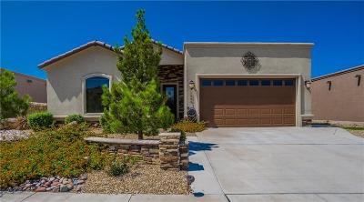 Single Family Home For Sale: 1605 Rock Dove Lane