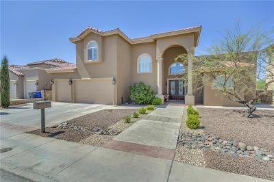 El Paso Single Family Home For Sale: 4021 Boy Scout Lane