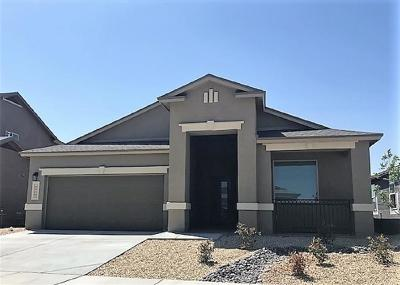 El Paso TX Single Family Home For Sale: $187,450