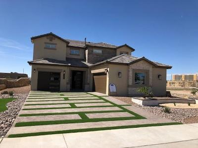 Single Family Home For Sale: 984 Abe Goldberg Drive