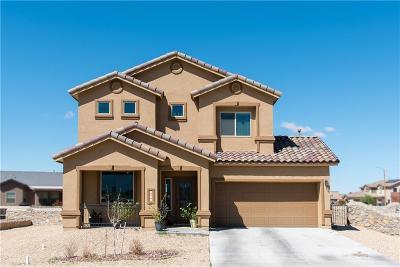 El Paso Single Family Home For Sale: 5525 Valley Laurel Street