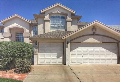 Single Family Home For Sale: 12509 Sun Terrace Avenue