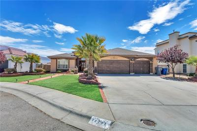 El Paso Single Family Home For Sale: 12292 Kit Carson Drive