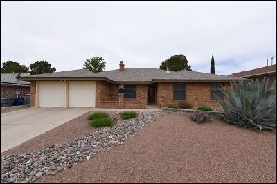 Single Family Home For Sale: 829 Agua Caliente Drive