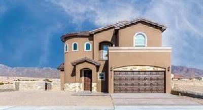 El Paso Single Family Home For Sale: 977 Abe Goldberg Drive