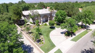 Single Family Home For Sale: 805 Rosinante Road
