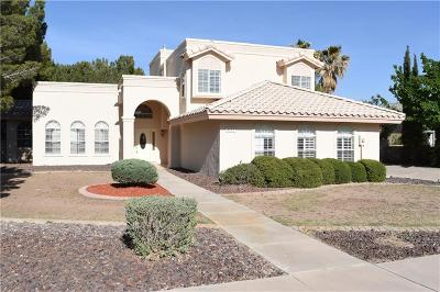 El Paso Single Family Home For Sale: 4508 Lazy Willow Drive