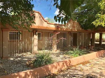 El Paso Single Family Home For Sale: 4390 Boy Scout Lane