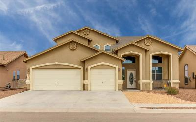 Single Family Home For Sale: 3120 Lookout Point Place