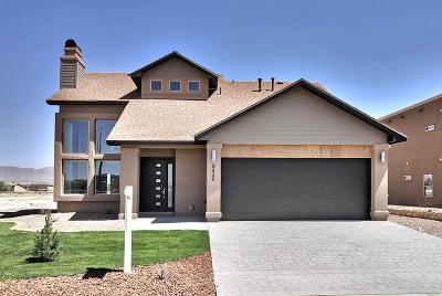 Single Family Home For Sale: 6236 Kings River Lane