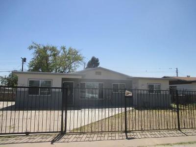 El Paso Single Family Home For Sale: 5304 Dalton Avenue