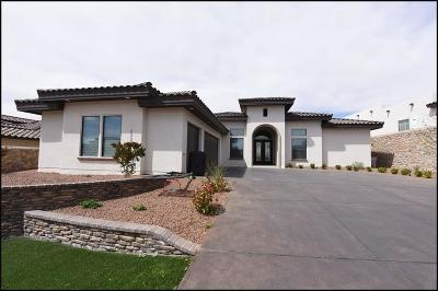 El Paso Single Family Home For Sale: 6569 Contessa Ridge