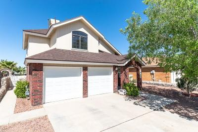 El Paso Single Family Home For Sale: 1049 Desierto Luna Street