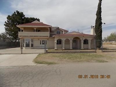 Socorro Single Family Home For Sale: 449 Dini Rozi Drive